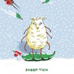 Exclusive to LDA—Sheep Tick